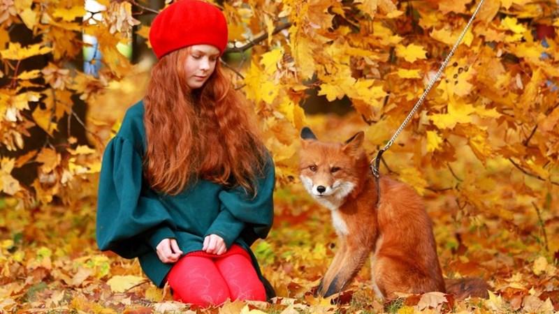 [Ảnh] Nga: Rực rỡ mùa thu vàng tại công viên Kolomensk ở thủ đô Moskva
