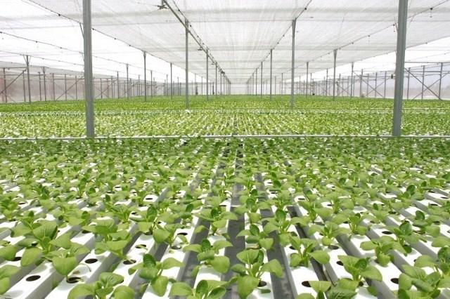 03 nguồn kinh phí thực hiện hoạt động khuyến nông