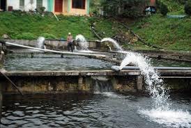 Từ 01/7/2020, áp dụng quy định mới về phí bảo vệ môi trường với nước thải