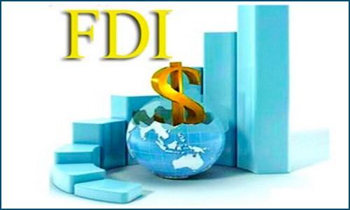 FDI có là điểm sáng?