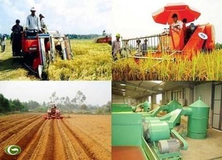 Vai trò của doanh nghiệp nông nghiệp đối với công nghiệp hóa, hiện đại hóa nông nghiệp, nông thôn ở TP. Hồ Chí Minh