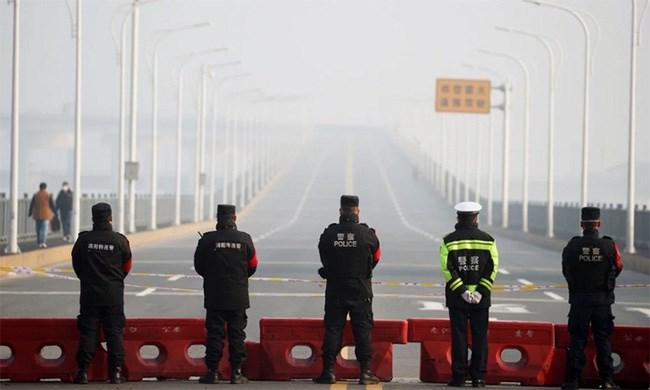 Xuất khẩu của Trung Quốc giảm hai chữ số do tác động của dịch COVID-19