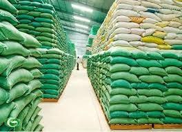 Tổng cục Dự trữ Nhà nước triển khai mua thóc, gạo dự trữ quốc gia