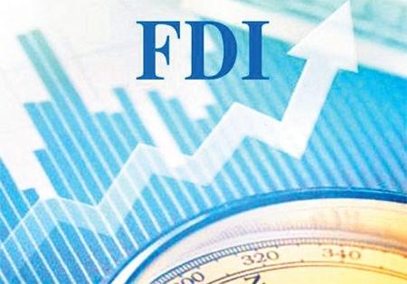 Kiến nghị cơ chế kiểm soát doanh nghiệp FDI lỗ nhưng vẫn mở rộng đầu tư