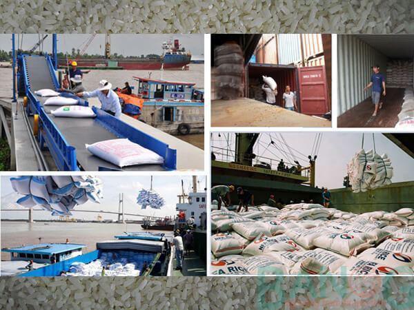 Tổng cục Hải quan tạo điều kiện tối đa trong kiểm tra gạo xuất khẩu