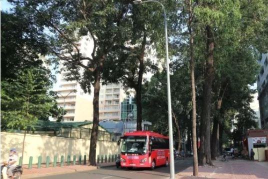 """Xử lý sai phạm vụ bán 1.200m2 """"đất vàng"""" tại TP. Hồ Chí Minh"""