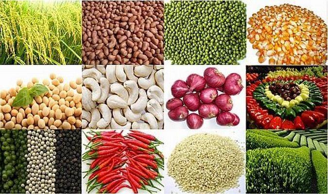 Nông nghiệp xuất siêu gần 3,3 tỷ USD