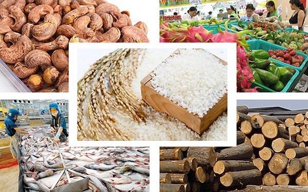 Doanh nghiệp cần xuất khẩu những mặt hàng có lợi thế