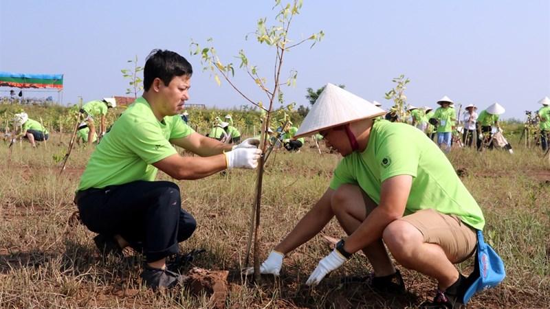 Làm rõ trách nhiệm pháp lý của chủ đầu tư bưng bít thông tin về tác động môi trường