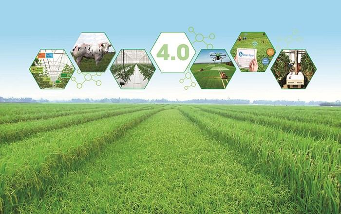 Đến năm 2030, nông nghiệp Việt Nam đứng trong số 15 nước phát triển nhất thế giới