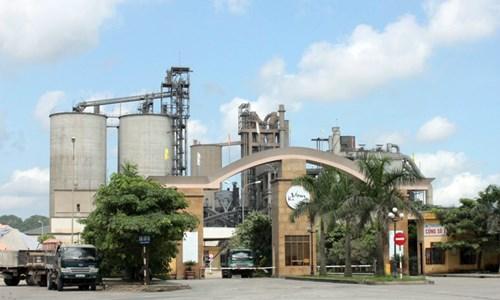 Bộ Tài chính đề nghị VICEM đánh giá các khoản đầu tư để đảm bảo hiệu quả kinh doanh