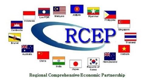 Rất nhiều khó khăn khi đàm phán RCEP, nhưng Việt Nam đã làm được