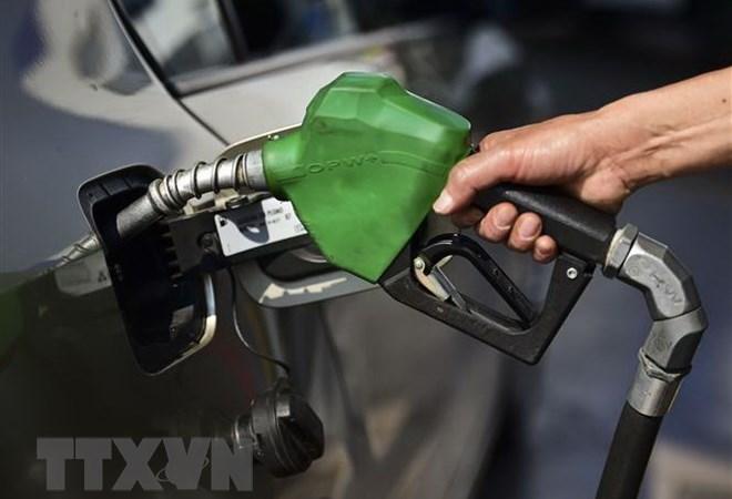 OPEC kỳ vọng giá dầu sẽ sớm ở trạng thái ổn định từ đầu năm 2019