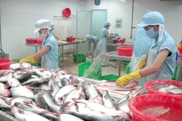 Kim ngạch xuất khẩu cá tra lập kỷ lục 2,26 tỷ USD