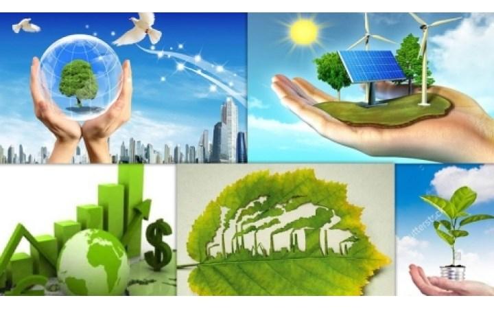 Những vấn đề đặt ra trong triển khai thuế bảo vệ môi trường
