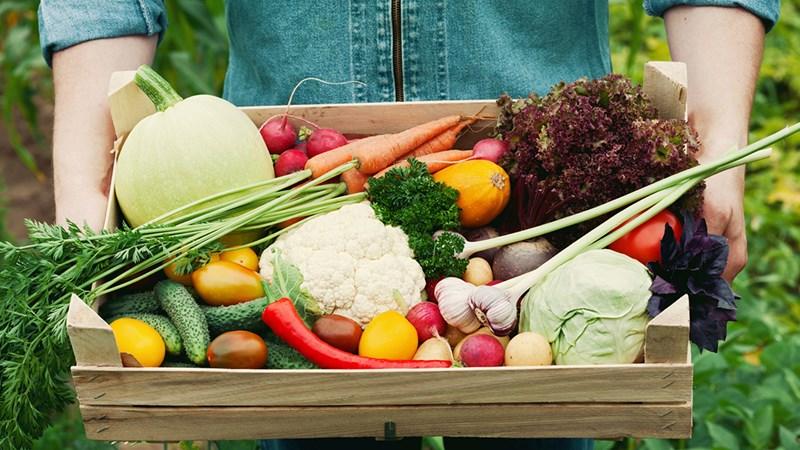 Xu thế tiêu dùng trong ngành thực phẩm, đồ uống
