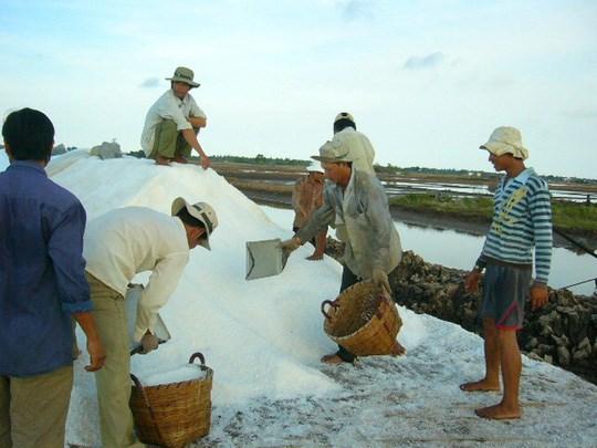 Bạc Liêu: Muối ế trắng đồng, kho dự trữ hoang phế