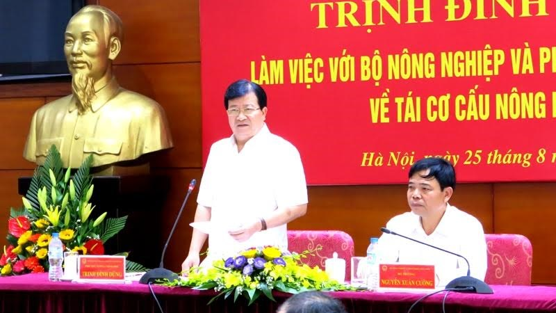 Phó Thủ tướng Trịnh Đình Dũng: Tái cơ cấu nông nghiệp tránh hình thức, phong trào