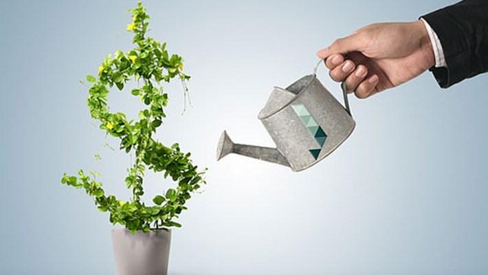 Tránh rủi ro khi đầu tư ra nước ngoài