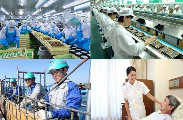 Trao đổi về việc làm đối với lao động nữ ở Việt Nam hiện nay