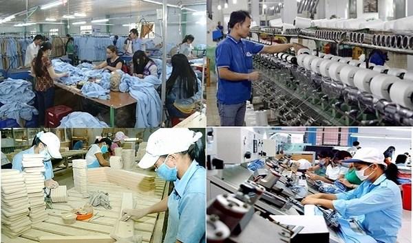 Kinh tế tư nhân: Chủ thể xương sống của nền kinh tế