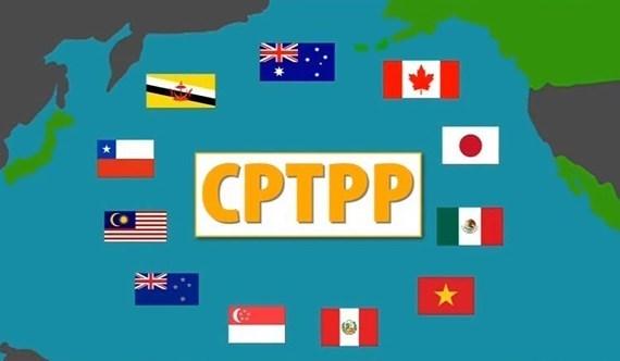 Doanh nghiệp Việt khó hưởng ưu đãi thuế từ CPTPP?