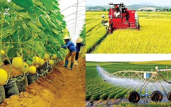 Nhân tố tác động đến tăng trưởng ngành Nông nghiệp của Việt Nam