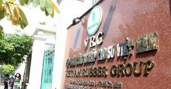 Phó Thủ tướng yêu cầu rà soát việc thoái vốn tại 5 công ty thủy điện của VRG