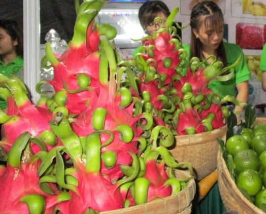 """Thanh long Việt bị Nhật """"soi"""" vì nhiễm thuốc bảo vệ thực vật"""