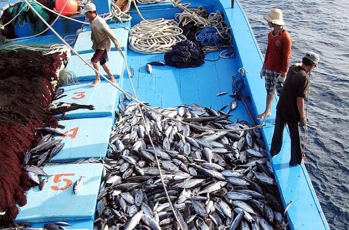 """Gỡ """"thẻ vàng"""" cho hải sản: Sẽ xử lý nghiêm chủ tàu vi phạm"""