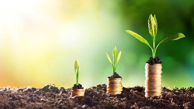 Phát triển hệ thống tài chính xanh nhằm thúc đẩy kinh tế xanh: Kinh nghiệm một số nước và gợi ý cho Việt Nam