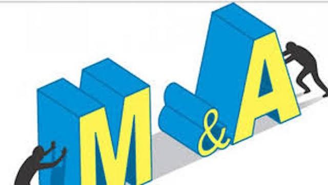Hai lĩnh vực sôi động M&A trong 6 tháng đầu năm 2019