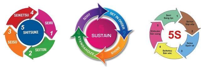 Ứng dụng công cụ 5s trong công tác quản lý và khám chữa bệnh tại các bệnh viện