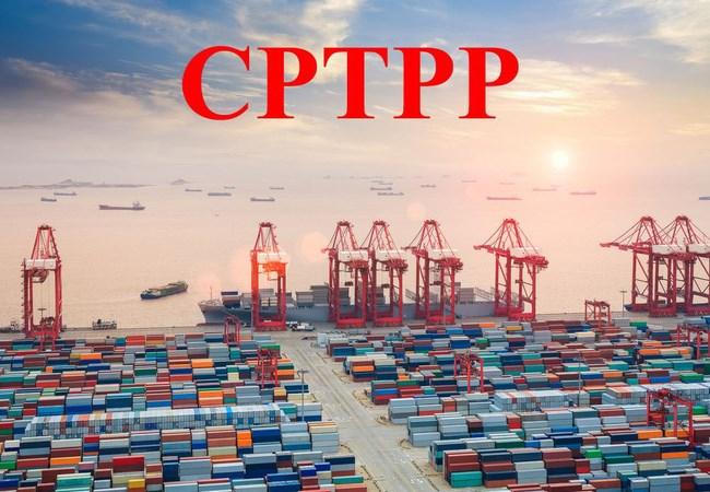 Vì đâu lợi ích từ CPTPP nằm trên giấy?