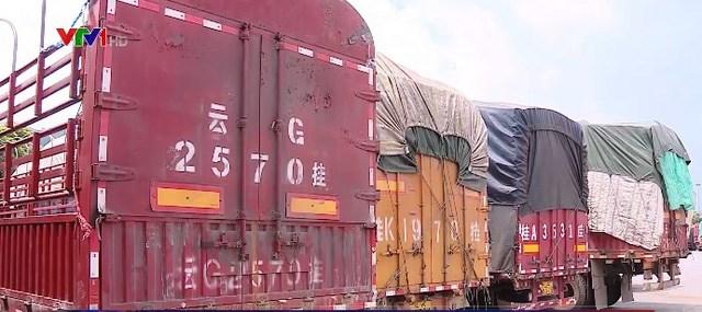 Kiểm đếm, xử lý gần 100 xe hàng hoá vô chủ ở Lào Cai