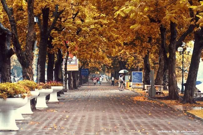10 địa điểm hấp dẫn trong nước nên đi du lịch vào mùa thu với chi phí thấp