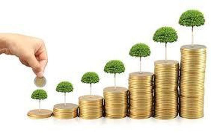 Một số vấn đề về phát triển mô hình tài chính vi mô ở Việt Nam