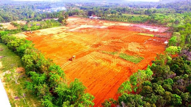 Phân lô đất nông nghiệp trái phép, xử lý như thế nào?