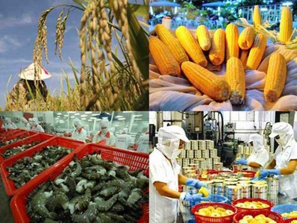 """Doanh nghiệp """"chê"""" nông nghiệp: Hóa giải nghịch lý"""