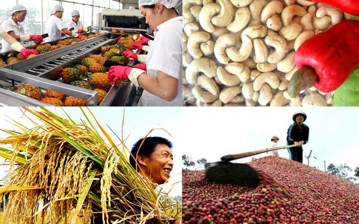 Yếu tố tác động đến thương mại nội ngành hàng nông sản giữa Việt Nam và APEC