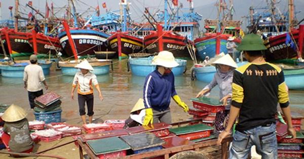 Lập 4 đoàn công tác liên ngành kiểm tra bồi thường tại các tỉnh miền Trung
