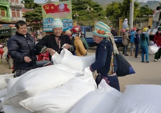 Cấp hơn 6.900 tấn gạo từ nguồn dự trữ quốc gia hỗ trợ 8 tỉnh