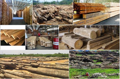 Australia thay đổi điều kiện nhập khẩu gỗ và sản phẩm từ gỗ