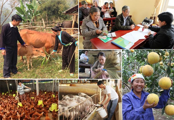 Hoạch định cơ chế phù hợp cho công tác giảm nghèo đối với từng vùng
