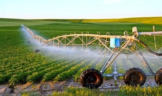 Tạo môi trường đầu tư thuận lợi cho doanh nghiệp đầu tư vào nông nghiệp