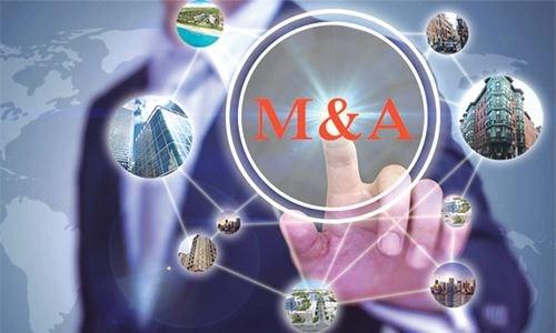 """M&A bất động sản: Không còn tình trạng """"cá lớn nuốt cá bé"""""""