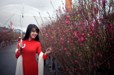 Hà Nội: Những địa điểm chụp ảnh Tết siêu đẹp