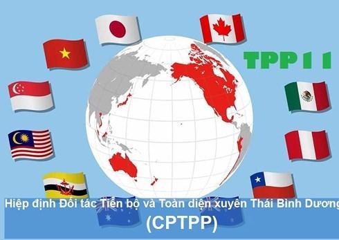 Nhìn lại chặng đường cam go trước khi ký kết CPTPP