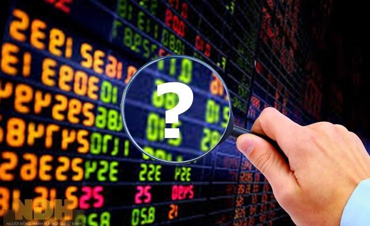 Khối ngoại mua ròng hơn 10.000 tỷ, chứng khoán Việt sẽ tăng đến đâu?