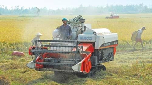 FDI vào nông nghiệp: Nhà nông trông chờ... vốn ngoại